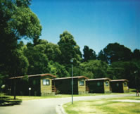 Katoomba Falls Caravan Park - Taree Accommodation