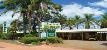 Avocado Motor Inn - Taree Accommodation