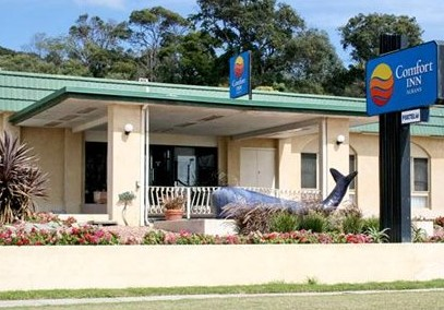 Comfort Inn Albany - Taree Accommodation