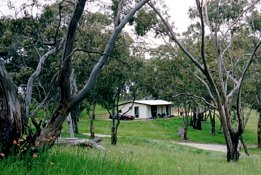 Clare Valley Cabins - Taree Accommodation