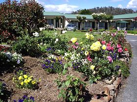 Wintersun Gardens Motel - Taree Accommodation