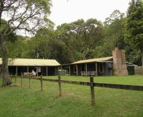 Tree Fern Lodge - Taree Accommodation