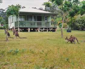 Berringer Lake Holiday Cottages - Taree Accommodation