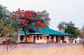Wauchope Hotel and Roadhouse - Taree Accommodation