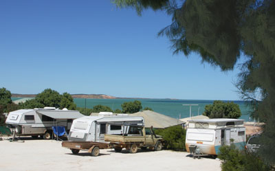 Blue Dolphin Caravan Park and Holiday Village - Taree Accommodation