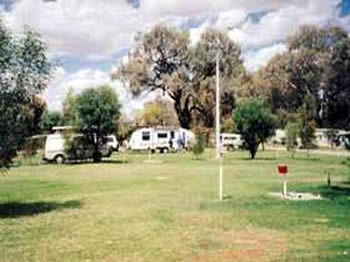 Morgan Riverside Caravan Park - Taree Accommodation