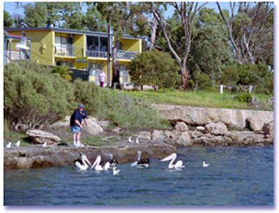Almonta Holiday Apartments - Taree Accommodation