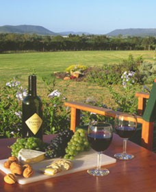 Tranquil Vale Vineyard Cottages - Taree Accommodation