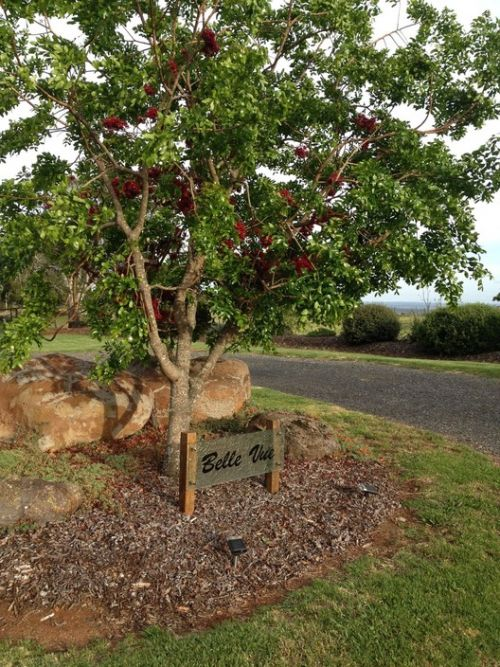 Belle Vue Studio - Taree Accommodation