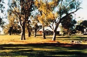 Blue Gum House - Taree Accommodation