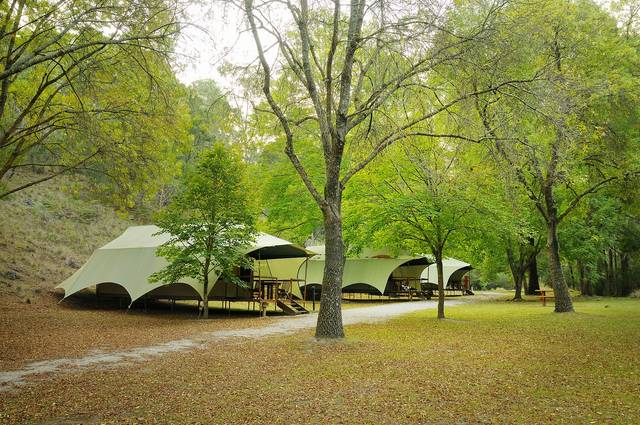 Buchan Caves Reserve - Taree Accommodation