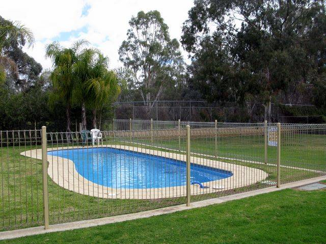 Pioneer Tourist Park - Taree Accommodation