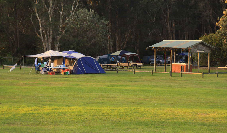 The Ruins campground and picnic area - Taree Accommodation
