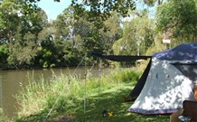 Williams River Holiday Park - Taree Accommodation