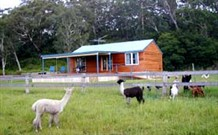 Moorallie Cottage Farm Stay - Taree Accommodation