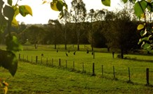 Stone Cottage Mittagong - Taree Accommodation