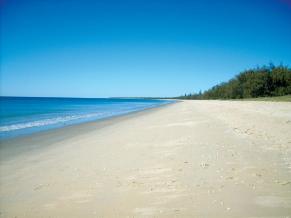 Woodgate Beach Tourist Park - Taree Accommodation