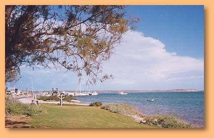 Denham Seaside Tourist Village - Taree Accommodation