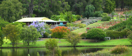 Pemberton Lavender and Berry Farm Cafe and Cottages - Taree Accommodation