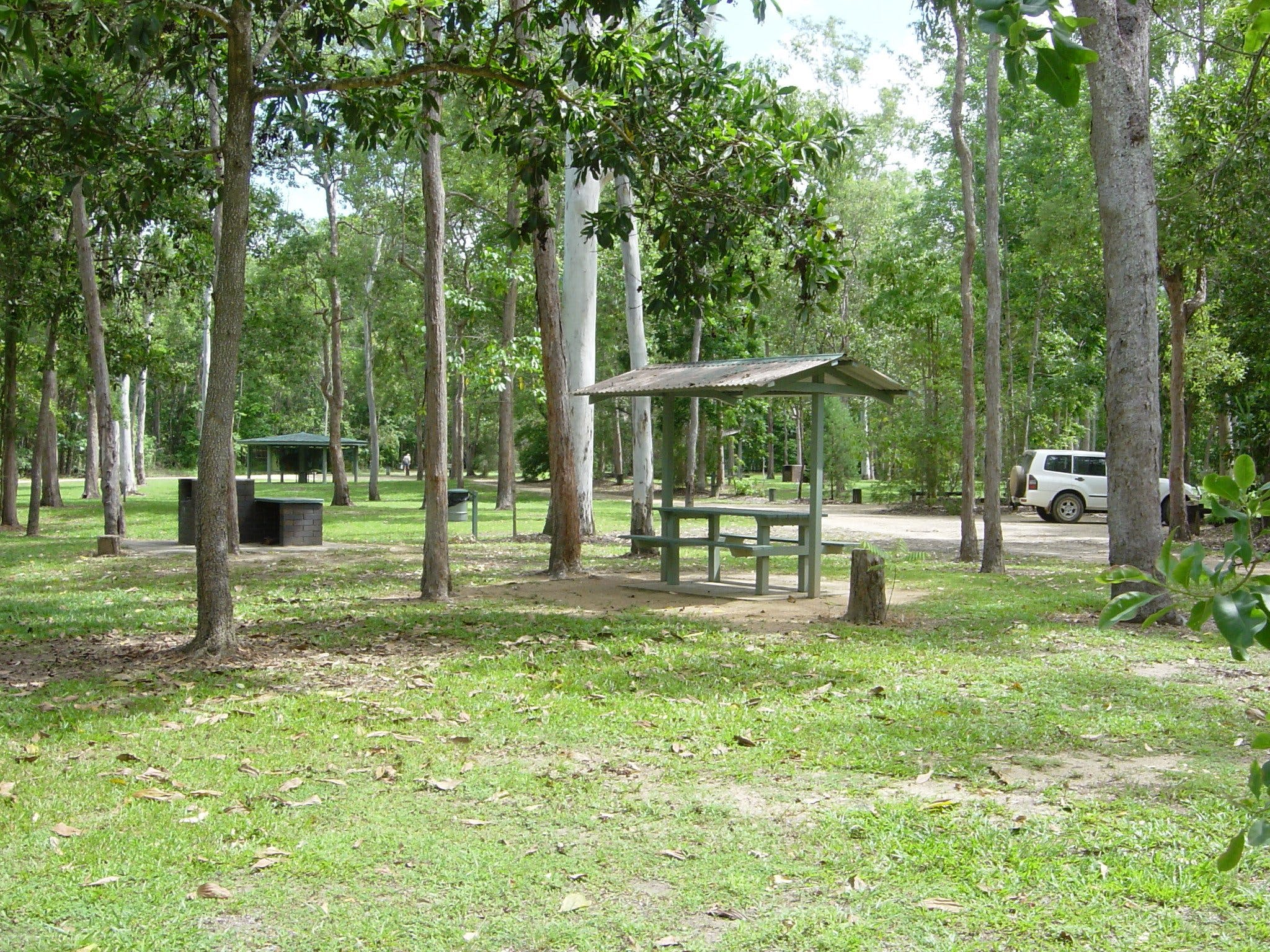 Broadwater camping area Abergowrie State Forest - Taree Accommodation