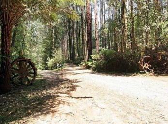 Hill n Dale Farm Cottages - Taree Accommodation