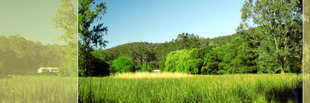 Waterholes Guest House - Taree Accommodation
