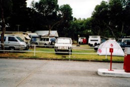 Windsor Gardens Caravan Park - Taree Accommodation