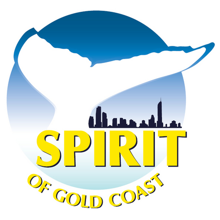 Spirit of Gold Coast Whale Watching - Taree Accommodation