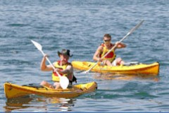 Manly Kayaks - Taree Accommodation
