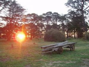 Point Cook Homestead - Taree Accommodation