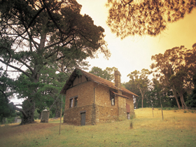 Heysen - The Cedars - Taree Accommodation