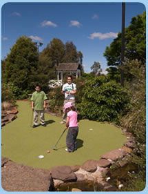 Wetlands Mini Golf - Taree Accommodation