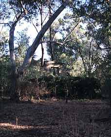 Ghost House Walk Trail, Yanchep National Park
