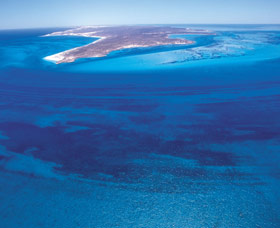 Dirk Hartog Island - Taree Accommodation
