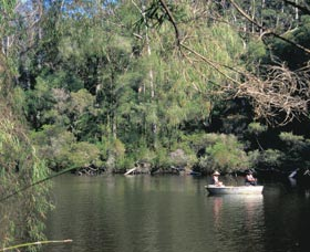 Warren National Park - Taree Accommodation