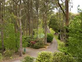 Mount Lofty Botanic Garden - Taree Accommodation