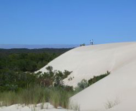 Yeagerup Sand Dunes - Taree Accommodation