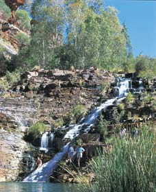 Fortescue Falls - Taree Accommodation