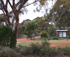 Gribble Creek Walk and Cycle Way - Taree Accommodation