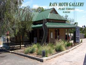 Rain Moth Gallery - Taree Accommodation