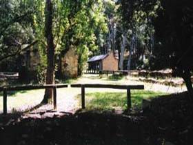 Wirrabara Forest Reserve - Taree Accommodation
