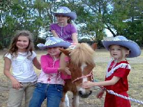 Amberainbow Pony Rides - Taree Accommodation