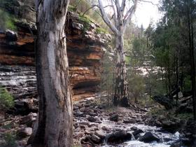 Mount Remarkable National Park - Taree Accommodation