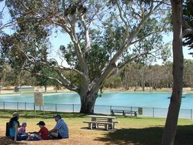 Naracoorte Nature Park and Swimming Lake - Taree Accommodation