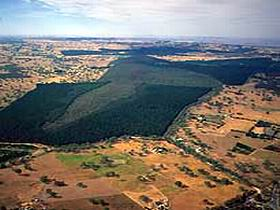 Mount Crawford Forest Reserve - Taree Accommodation