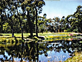 Smithton Country Club - Taree Accommodation