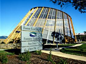 Forest EcoCentre - Taree Accommodation