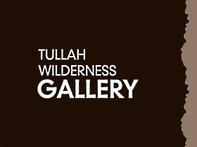 Tullah Wilderness Gallery - Taree Accommodation