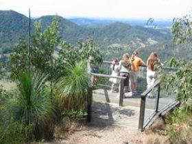 Mapleton Forest Reserve - Taree Accommodation