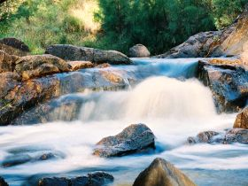 Crows Nest Falls - Taree Accommodation